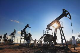 cloud erp business one sap for oil industry