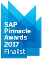 SAP Business One Pinnacle Award 2017