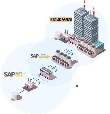 Who Buys Which SAP Product Visual
