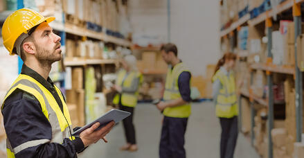 SAP Business One ERP Software for Distribution