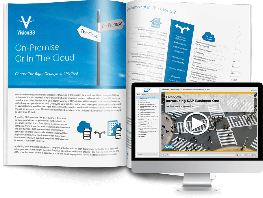 SAP Business One Information Kit