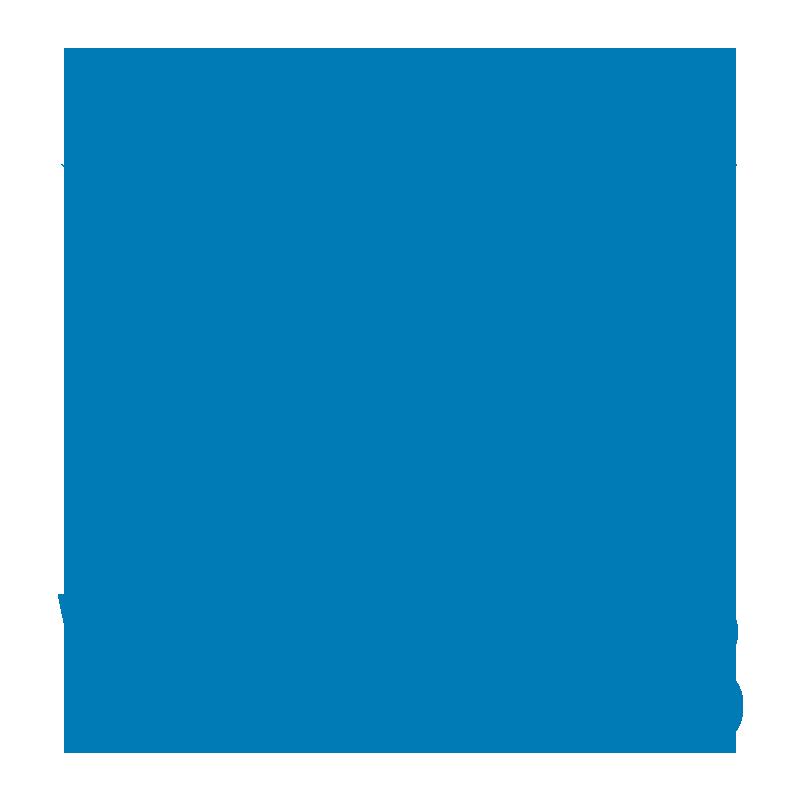vision33-logo-800x800 (2) (1)